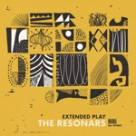 The Resonars - Nobody Can Tell You What to Do