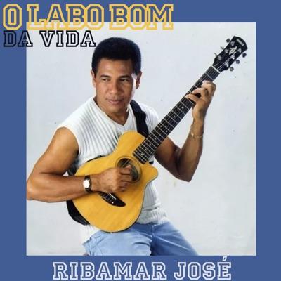 O Lado Bom da Vida - Single - Ribamar Jose