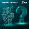 Are You Ok - Fubar & Jester & DTALE mp3