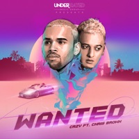 Wanted (feat. Chris Brown) - Single Mp3 Download