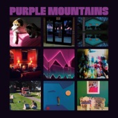 Purple Mountains - Nights That Won't Happen