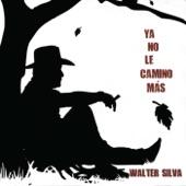 Walter Silva - Los Dos Olvidos