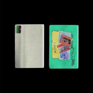 Passports - Single