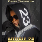 Felix Wazekwa - Article 23