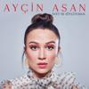 Ayçin Asan - Dön Desem artwork