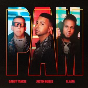 PAM - Single