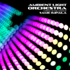 Ambient Light Orchestra - The Less I Know the Better artwork