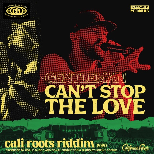 Can't Stop the Love - Single