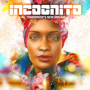 For the Love of You (feat. Phil Perry & Maysa) - Incognito - Incognito