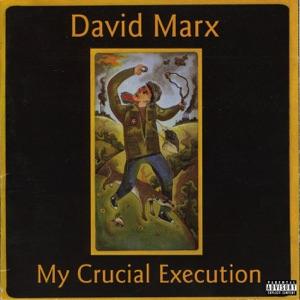 David Marx - Don't Cry While I'm Gone