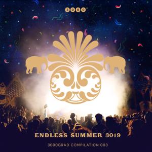 Various Artists - Endless Summer 3019