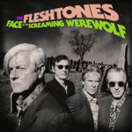 The Fleshtones - The Show Is Over