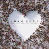 What You Won t Do For Love - Luke Burr mp3