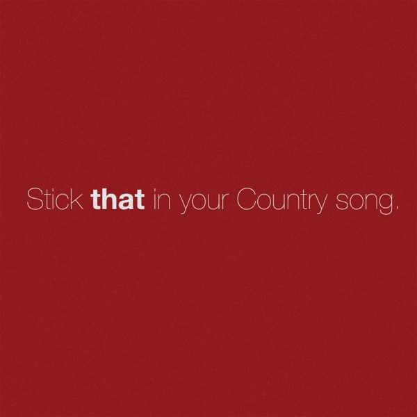 Stick That in Your Country Song - Single