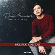 Winter in the Air (Deluxe) - David Archuleta - David Archuleta