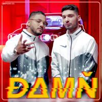 Raftaar & KR$NA - Damn (From