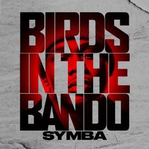 Birds In The Bando - Single