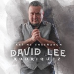 David Lee Rodriquez - Empiezo a Olvidarte