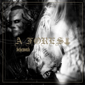 A Forest - EP
