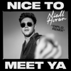 Nice to Meet Ya Diplo Remix - Niall Horan & Diplo mp3