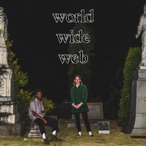 Danger Incorporated - World Wide Web