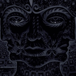 TOOL - Right In Two