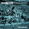 Slowdown - Single