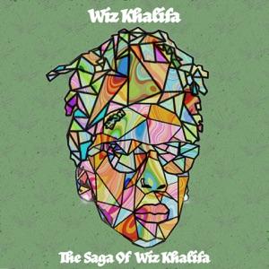 Wiz Khalifa - Y U Mad feat. Megan Thee Stallion, Ty Dolla $ign & Mustard