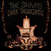 The Shivas - Turn Me On