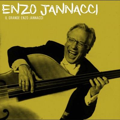 Il grande Enzo Jannacci - Enzo Jannacci