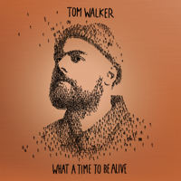 Download Mp3 Tom Walker - What a Time To Be Alive (Deluxe Edition)