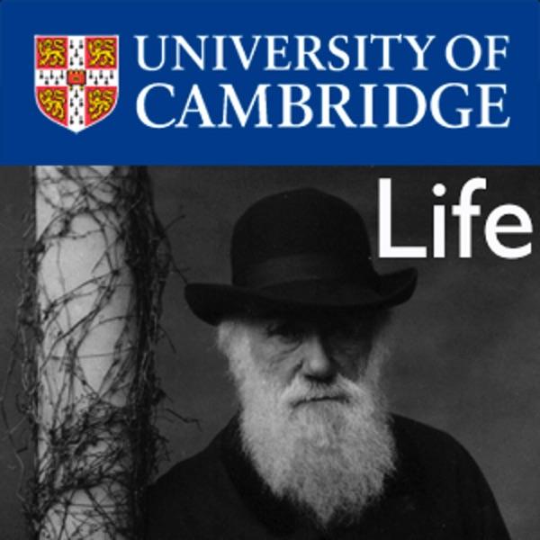Life – Darwin College Lecture Series 2012