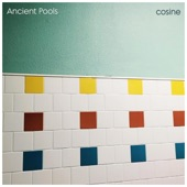 Ancient Pools - Ocean for Ocean and Forget