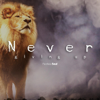 Fearless Soul - Never Giving Up artwork