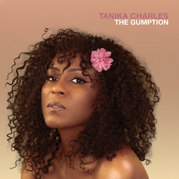iTunes Artwork for 'The Gumption (by Tanika Charles)'