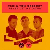 Never Let Me Down - VIZE & Tom Gregory