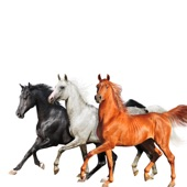 Billy Ray Cyrus - Old Town Road