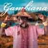 St da Gambian Dream - Gambiana artwork