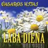 Vasaros Hitai - Rytas perone (feat. Rolandas Janavičius) artwork