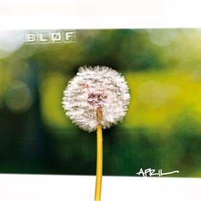 April - Bløf