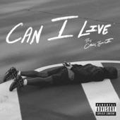 Casey Jones II - Can I Live
