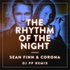 The Rhythm of the Night DJ PP Remix Single