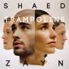 Trampoline - SHAED & ZAYN mp3