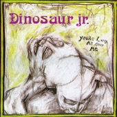 Dinosaur Jr. - In a Jar
