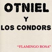 Otniel y Los Condors - Do it All Over Again