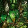 Icaro - Maneesh De Moor