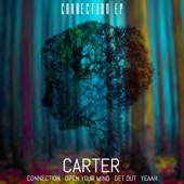 Carter - Connection