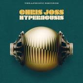 Chris Joss - Sundown Slide