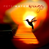 Peter Kater - Wings Of Love