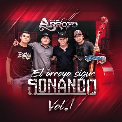 El Arroyo Sigue Sonando, Vol. 1 (En Vivo) - Los del Arroyo